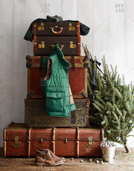 Winter vest hanging on trunk