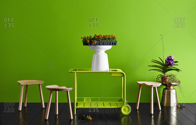 Flowers and various furniture