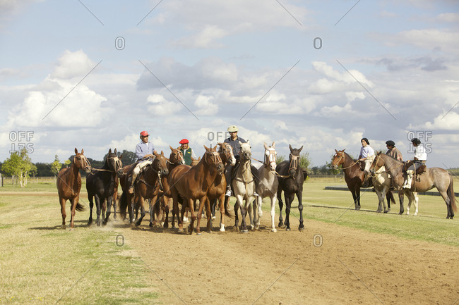March 18, 2013: Group of horses with workers on farm in Argentina