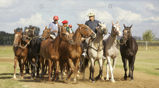 March 18, 2013: Men leading a group of horses on farm in Argentina