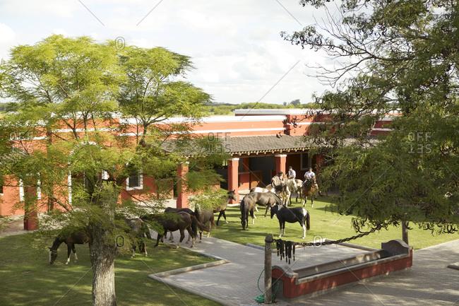 March 18, 2013: Horses grazing near estancia building in San Antonio de Areco, Argentina
