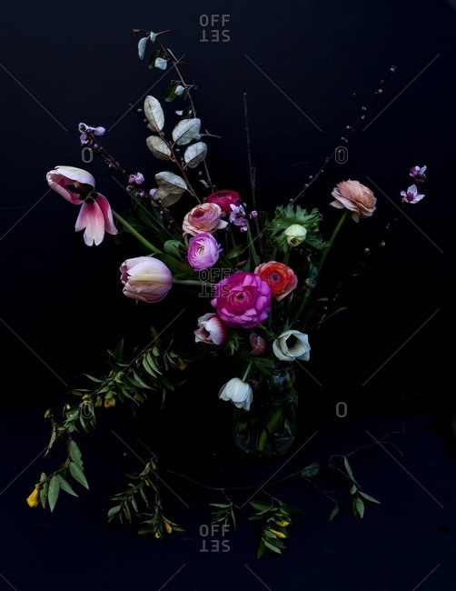 Bouquet Of Colorful Flowers On A Black Seamless Background Stock Images Page Everypixel
