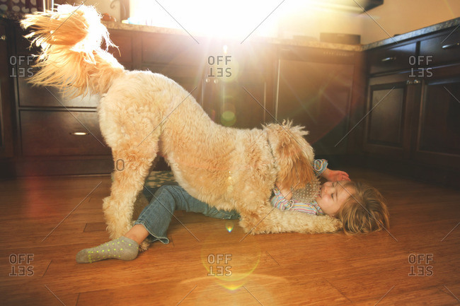 Dog and little girl playing on a kitchen floor