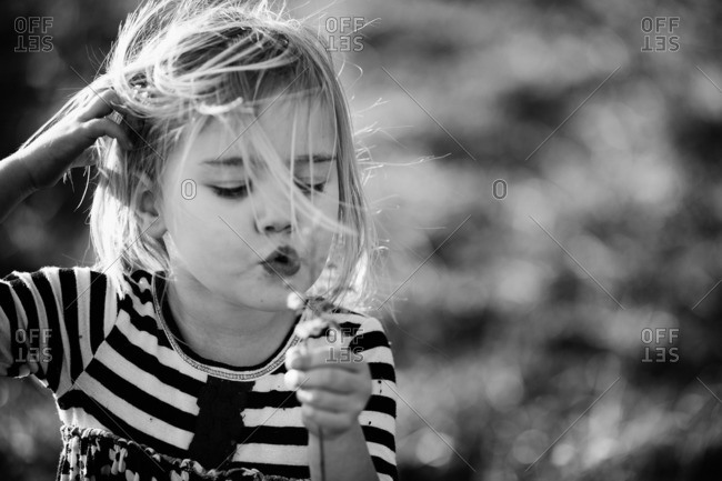 Close up of a little girl blowing on a flower