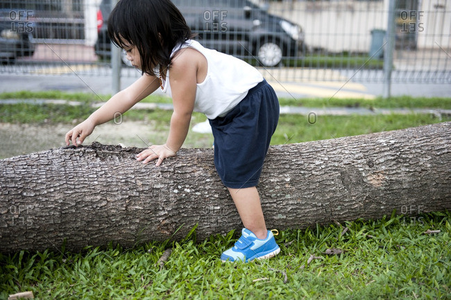 Toddler straddling a log in a local park