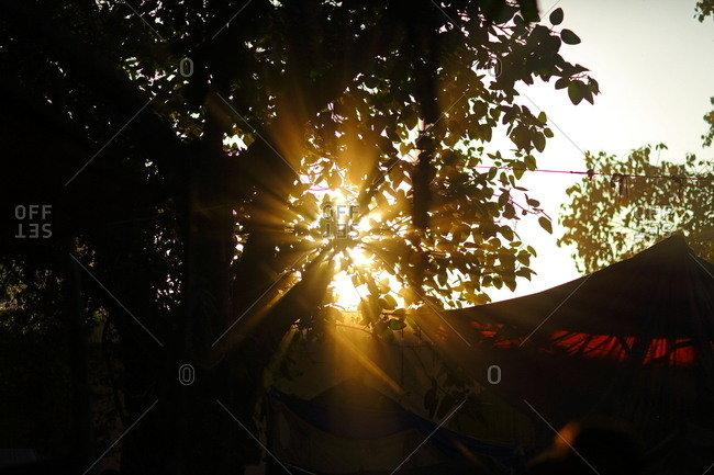 Sun rising through trees over a cloth tent
