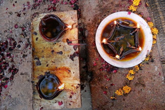 wax flower stock photos - OFFSET