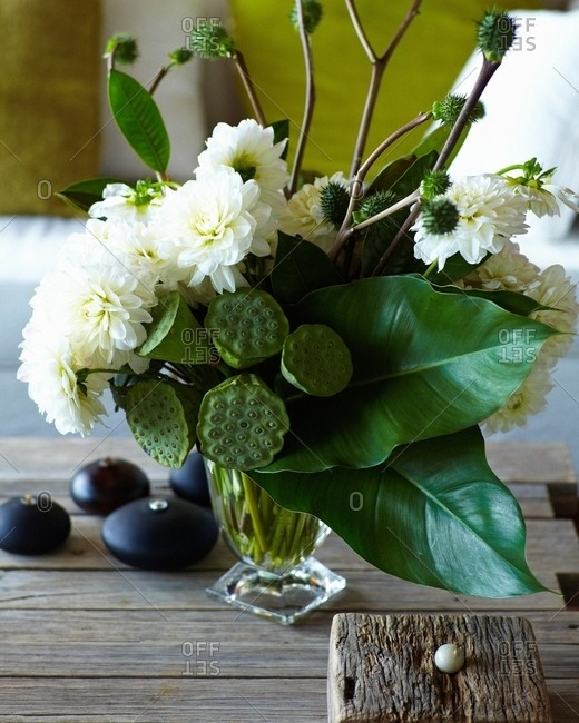 Vase of organic plants and white flowers on table