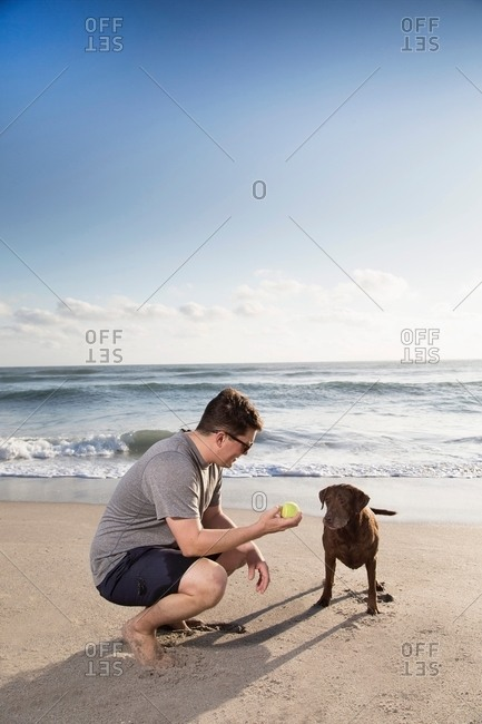 Mid adult man and dog on beach, man holding ball out to dog