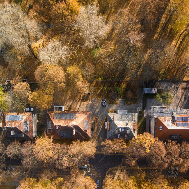Residential rooftops and autumn trees in Klaipeda, Lithuania