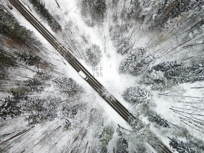 Truck on a road in a snow-covered forest