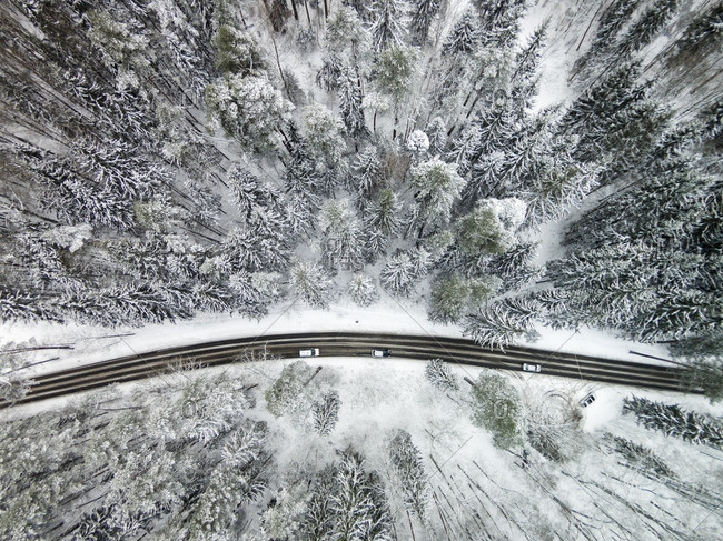 Cars on a remote snow covered highway in a forest