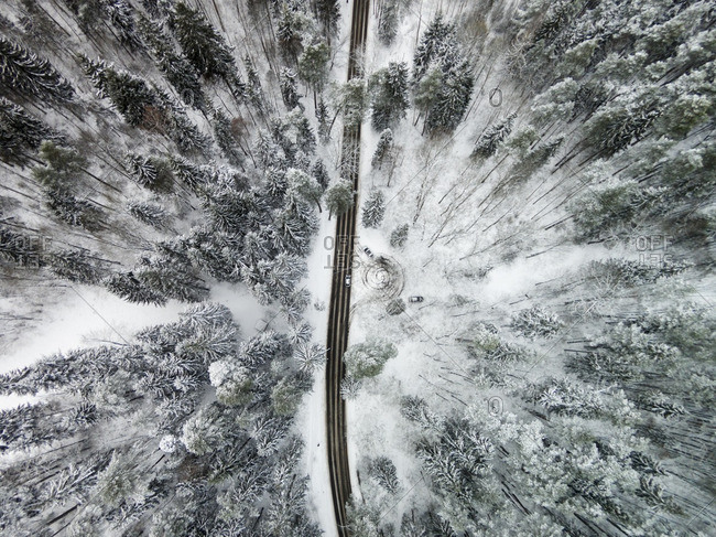 Remote snow covered highway in a forest
