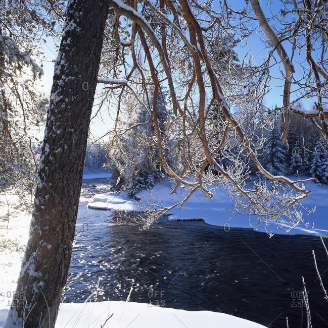 Flowing stream in Dalarna, Sweden