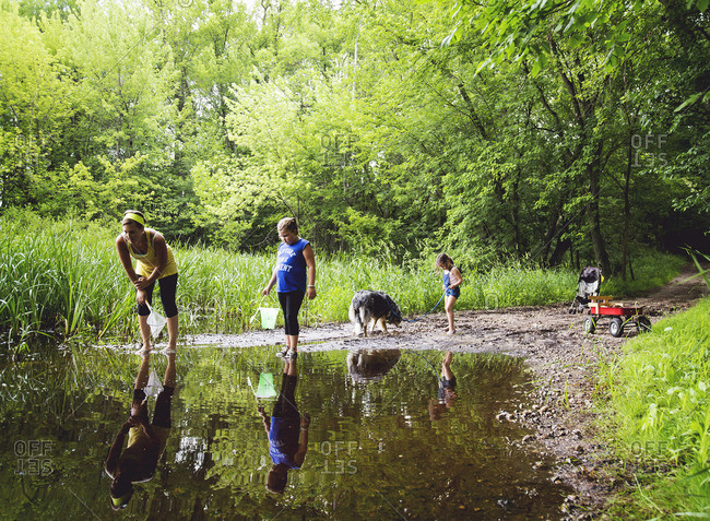 Children looking for frogs in a swamp
