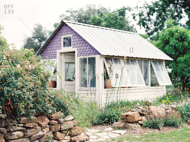 Purple greenhouse