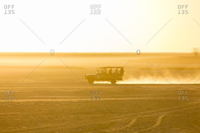 Safari vehicle with tourists driving across dusty savanna in Botswana at sunset