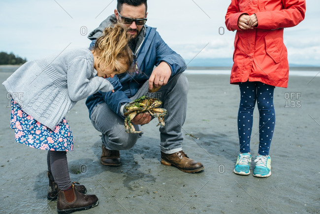 Girl inspecting crab her father found on a beach