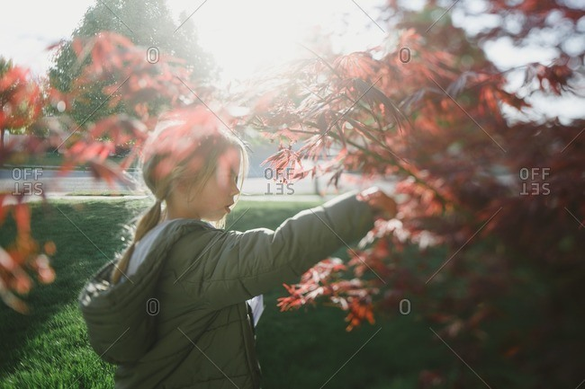 Girl standing next to a Japanese maple tree