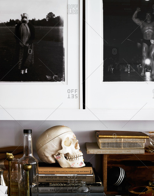 May 7, 2014: Skull among home decor