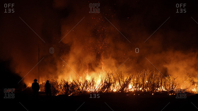 People watching a raging brush fire at night
