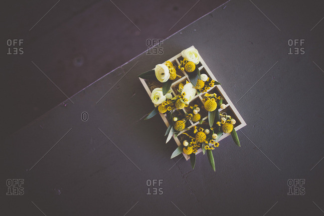 Flowers in box compartments