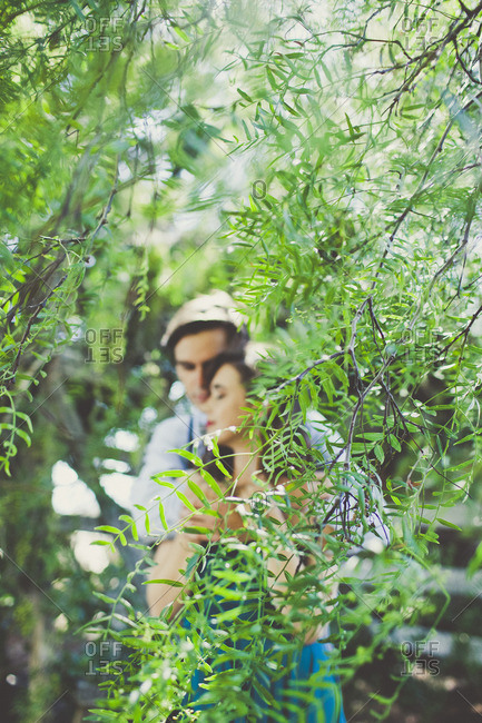 Couple hidden by tree branch