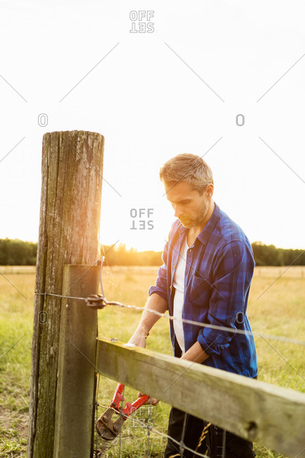 Man holding bolt cutter on grassy field at farm
