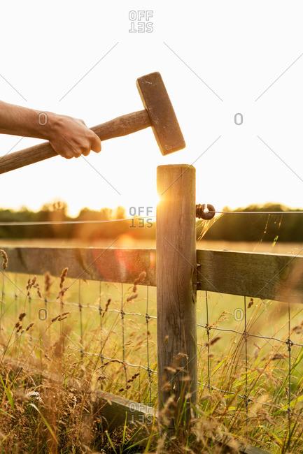 Man hammering fence at farm on sunny day