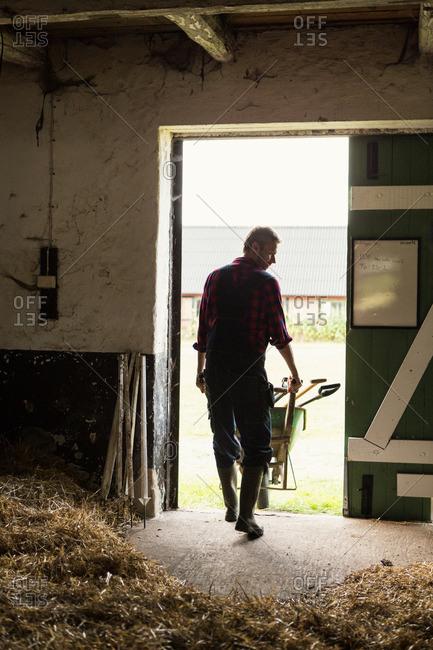 Rear view of man with wheelbarrow walking in barn