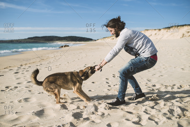 Man playing with his mongrel on the beach