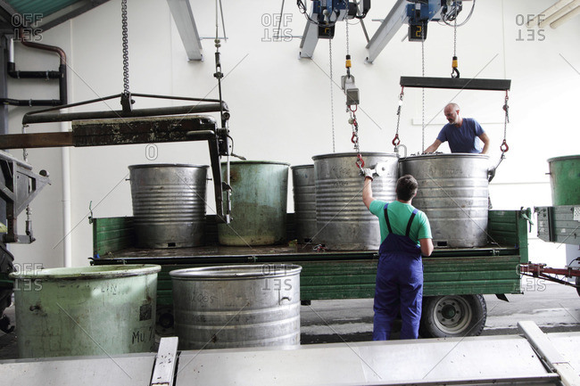 Workers with containers of grapes in industrial wine cellar