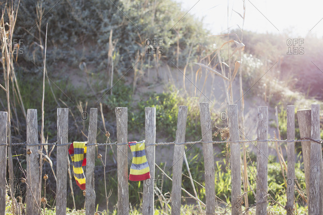 Striped socks drying on a fence