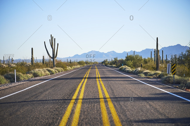 Road through Arizona desert
