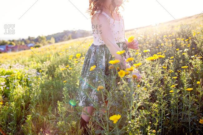 Girl walking among wildflowers