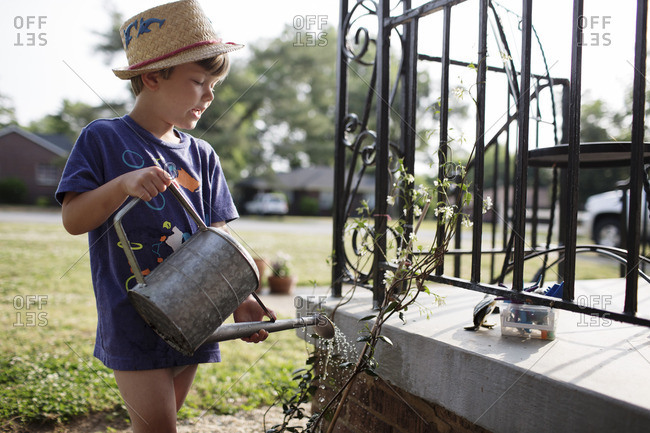 Boy watering plants with a watering can