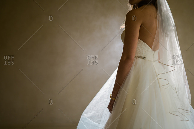 Bride wearing wedding dress and veil