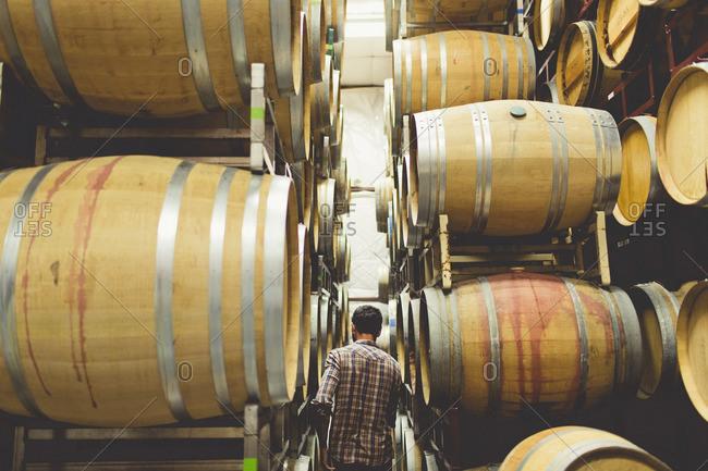 Man walking among wine barrels