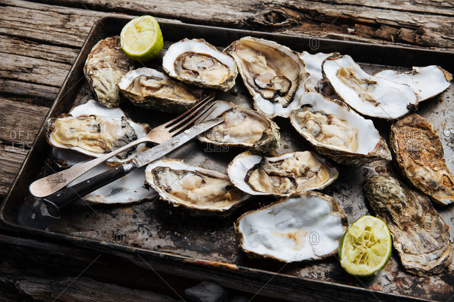Open oysters and limes on a tin pan with a vintage fork and knife