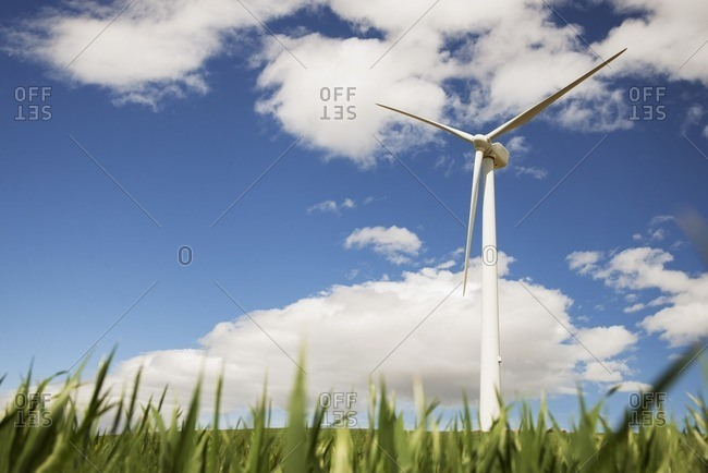 Low angle view of wind turbine on grassy field against sky