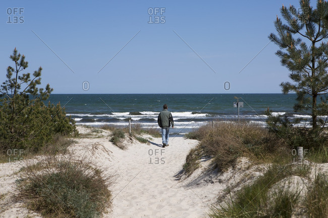 Man walking toward the Baltic Sea on Rugen Island, Germany