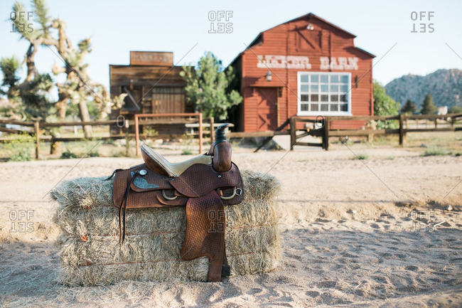 A saddle on a haystack