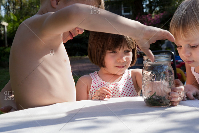 Boy and two sisters with green anole lizard and jar on garden table
