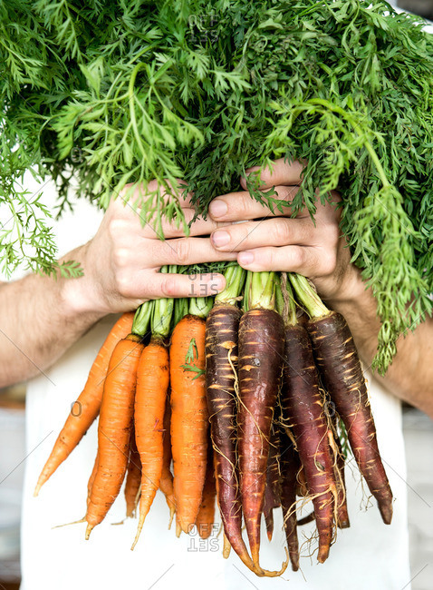 Man holding bunch of colorful carrots