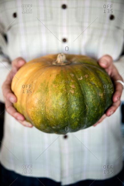 Winter cheese pumpkin