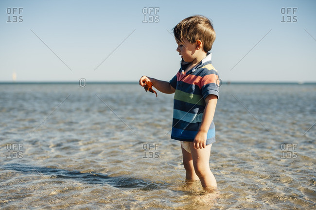 Little boy standing on a beach holding a leaf