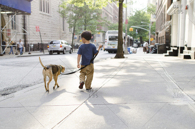 Back view of little boy walking dog on city sidewalk