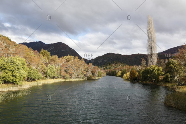 Red autumn foliage along the shore of the Manso River, Patagonia, Argentina