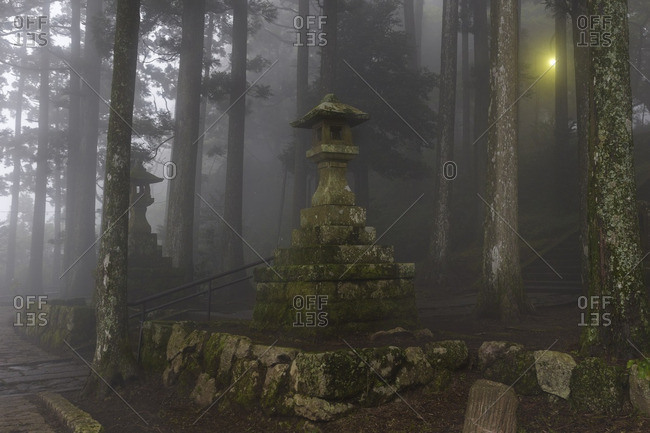 Moss-covered stone lanterns, Hakone, Japan