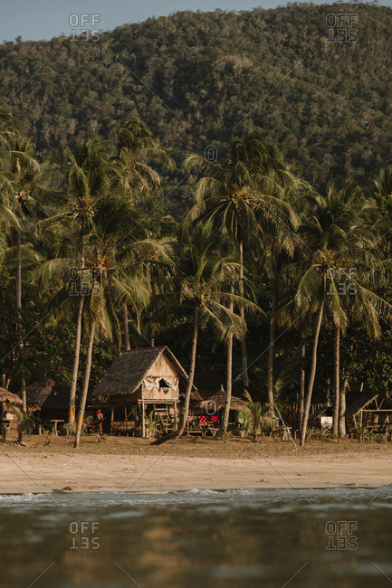 Raised huts on tropical shore